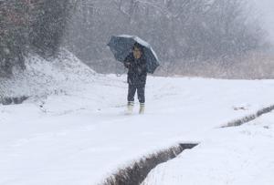 寒冷地、豪雪地帯での「越冬入院」「越冬入所」は社会的入院と言えるのか!?