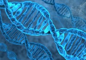 個人向け遺伝子検査市場の拡大にいたる道のりはこうして作られた
