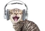 世界の若者の約50%が「ヘッドホン難聴」予備軍! しかも将来、さらに深刻な病のリスクも?