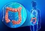 現代医学を大きく変える腸内細菌の研究 免疫機能と密接な関係が!