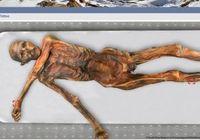 5300年前のミイラを最新の「DNA鑑定」で死因や職業を解明!