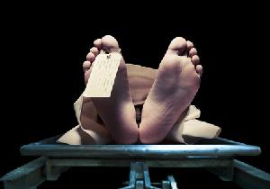 「海外人体解剖実習ツアー」が盛況の訳 コメディカルの質の担保に不可欠!?