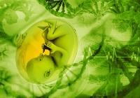妊娠中は赤ちゃんの遺伝子機能を調整する葉酸、ビタミンB群、ビタミンDを積極的に摂ろう