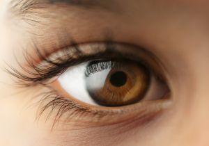 再生医療が最も進む眼科の疾患――患者たちに光をプレゼントできる日も近い!