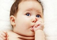 赤ちゃんは「口でものを見る」!? 脳のシナプスの「刈り込み」は神経細胞のつながりを強める