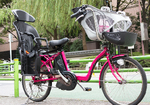 元AKB48の篠田麻里子さんも「電動アシスト自転車」でケガ! 増える事故の傾向を分析