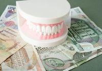 """世界初、動物実験で""""歯の再生""""に成功! リーズナブルな費用での実用化は間近か!?"""