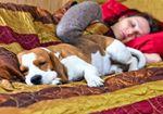 ペットと寝るのは是か非か!? ペストをはじめ「人獣共通感染症(ZOONOSIS)」の危険も