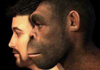 DNA鑑定秘話〜第3の人類「デニソワ人」とは何者か? 知られざる人類の祖先たちの素顔!