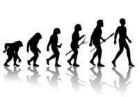 DNA鑑定秘話〜約3万年前、ネアンデルタール人が絶滅したのはなぜか?
