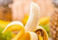 """「世界からバナナが消えたなら」~""""パナマ"""" の拡大が世界を震撼させる"""