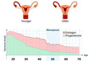 20〜30代の「更年期障害」の治療法は?  女性ホルモン(エストロゲン)や漢方薬はどう使うのか?