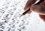 がん治療、免疫チェックポイント阻害剤の有効性を高める新たな発見〜1万例を超えるゲノム解析データからわかったこと
