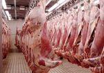 出荷される牛豚の6割以上は病気! 正体不明の深海魚まで食材に~どうなる日本人の食卓!?