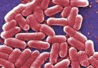 「最後の切り札」の強力抗生物質も効かない「多剤耐性菌」の恐怖 世界で1000万人が死亡!?