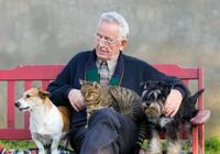 """愛するペットに""""遺産""""を譲りたい! あなたの愛犬や愛猫を路頭に迷わせない方法"""