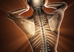 自律神経失調症に対する治療では「背骨」へのアプローチで大きな効果が現れる!?