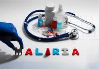 稲田防衛大臣がマラリア予防薬で副作用 !!改めてマラリア予防策を考える