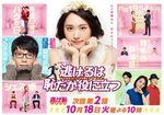 新垣結衣・星野源さん主演ドラマ『逃げるは恥だが役に立つ』~<契約結婚>は現実に成立する?