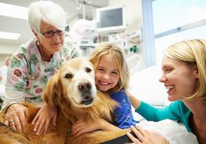 ファシリティドッグ「ベイリー」と「ヨギ」が小児病院で難病の子供たちに精神的なケアと癒し