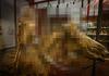 【閲覧注意】パリの「フラゴナール博物館」に世界最高傑作といわれる「人体標本」を観に行った!