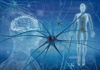 脳神経学の大発見!「iSC細胞(虚血誘導性多能性幹細胞)」の移植で「死んだ神経細胞」が再生した!