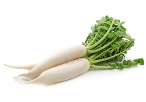 大根の辛み成分の遺伝子が判明! 品種改良で新ブランド「悠白」「サラホワイト」を開発