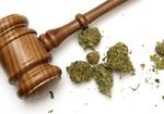 トランプ政権で大麻が合法に!? 強硬な反対派が司法長官で州法と連邦法に矛盾!?