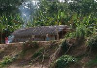 「世界一健康な心臓」をもつアマゾン・チマネ族の生活習慣の秘密