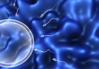 若いうちのEDは動脈硬化注意のサイン~不妊の原因の半分は男性である!