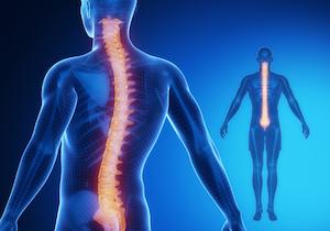 脊柱管狭窄症は鎮痛剤だけでは治らない!「血管拡張薬」で血流を促進すれば症状が緩和する