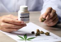「医療大麻」を認めると<乱用>が増加! 米国(29州が許可)の最新調査で示唆