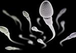 世界初「精液の成分研究プロジェクト」が始動!生活習慣の改善が男性の「受精力」を高める