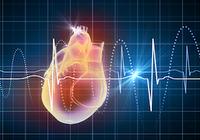 心臓手術は午後に行うと術後リスクが低い!体内時計の影響を受ける心臓の修復