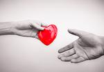 日本で臓器提供者が増えない理由「臓器移植法」から20年「脳死ドナー」わずか465人
