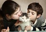 猫からの感染症で60代女性が死亡 厚労省「ペットとの濃厚な接触は避ける」よう注意喚起