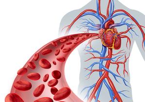 血流が停止する「ゴースト血管」の恐怖!アルツハイマー病患者の脳の毛細血管は約29%も少ない!