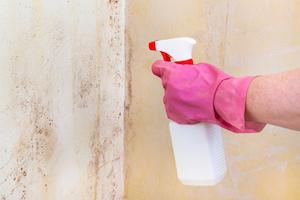 カビ取り剤の危険度を徹底検証!人体や環境にどんな悪影響を及ぼすのか?