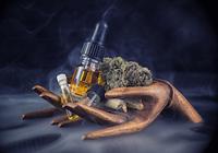 姿や形を変えて「覚醒剤」や「大麻」が社会に広く深く蔓延している!