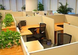 開放的なオフィスで仕事ストレスが減る? 米国では職場環境による経済損失25兆円!?