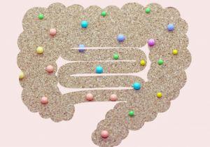 がん治療と腸内フローラの関係性を解明する研究分野に集まる注目
