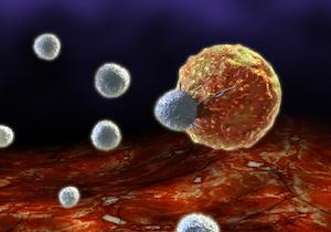 世界で「がん免疫療法」が確実に浸透〜ヨーロッパ臨床腫瘍学会(ESMO2017)の画像1