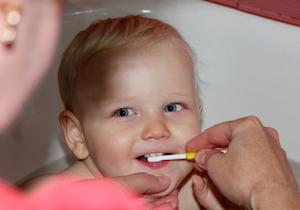 「フッ素」「キシリトール」が子どもの歯を守る? 知っておきたい活用法とデメリットの画像1