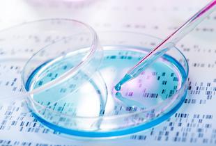 「ゲノムワイド関連解析」と最先端診断技術のコラボが生む衝撃の医療イノベーションの画像1