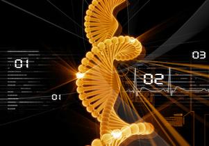 受精卵で心疾患の「遺伝子変異の修復」に成功! ゲノム編集の可能性はどこまで!の画像1