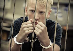 発達障害と少年犯罪〜私たちが正しい理解を持って幼少期から就労に至るまで長期にわたる社会支援をの画像1