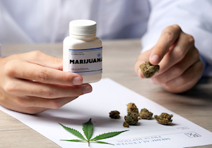 米国で「医療大麻」を認めると違法使用や大麻使用障害も増加の調査報告の画像1