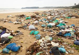 レジ袋・ストロー・カトラリー……プラゴミが世界の海を殺す日の画像1