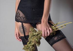 なぜマリファナ(大麻)常用者は「セックスの頻度が20%も高い」のか?の画像1