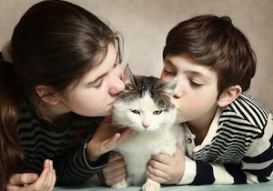 国内初!猫からの感染症で60代女性が死亡!厚労省は「ペットとの濃厚な接触は避ける」よう注意喚起の画像1